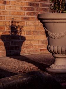 Vase At Dusk